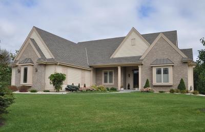 Pewaukee Single Family Home For Sale: W249 N2196 Fox Creek Ct
