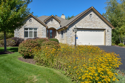 Lake Geneva Condo/Townhouse Active Contingent With Offer: 180 Palmer Pl