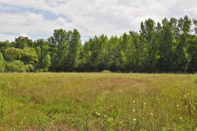 Mequon Residential Lots & Land Active Contingent With Offer: 9820 N Hilltop Ln