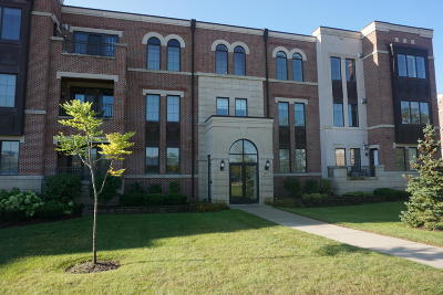Brookfield Condo/Townhouse Active Contingent With Offer: 19075 Thomson Dr #302