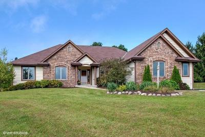 Mukwonago Single Family Home Active Contingent With Offer: W321s9025 Leah Way