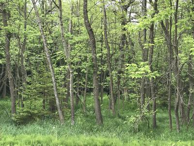 Sheboygan Residential Lots & Land For Sale: 5.15 Acres Indian Mound Rd