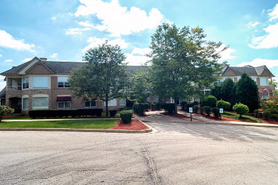 Franklin Condo/Townhouse Active Contingent With Offer: 7045 S Riverwood Blvd #202