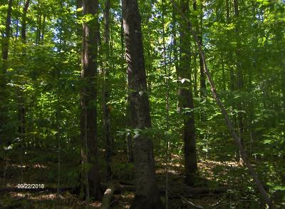 Menominee County, Marinette County Residential Lots & Land For Sale: 9.96 Acres Whiskers Ln