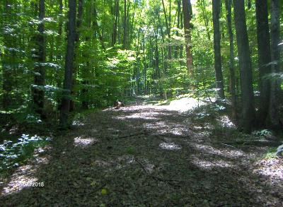 Menominee County, Marinette County Residential Lots & Land For Sale: 16.5 Acres Whiskers Ln
