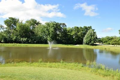 Pewaukee Condo/Townhouse Active Contingent With Offer: N16w26559 Meadowgrass Cir #B