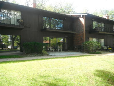 Lake Geneva Condo/Townhouse Active Contingent With Offer: 10 Zurich Ct