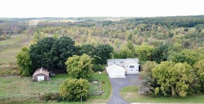 Plymouth Single Family Home For Sale: W8450 State Road 67