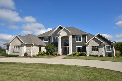 Waukesha County Single Family Home For Sale: W275n4036 Ishnala Trl