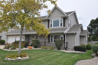 Racine Single Family Home For Sale: 5831 Meadows N Dr