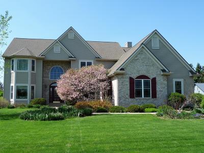 Racine County Single Family Home For Sale: 30800 Running Fox Trl