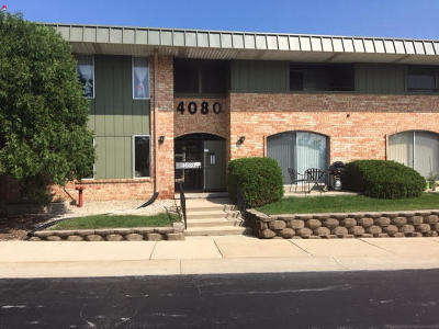 Milwaukee County Condo/Townhouse Active Contingent With Offer: 4080 W Rivers Edge Cir #5