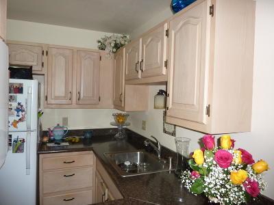 Milwaukee County Condo/Townhouse For Sale: 4050 W Rivers Edge Cir #14