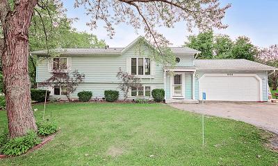 Kenosha County Single Family Home For Sale: 1903 Esch Rd