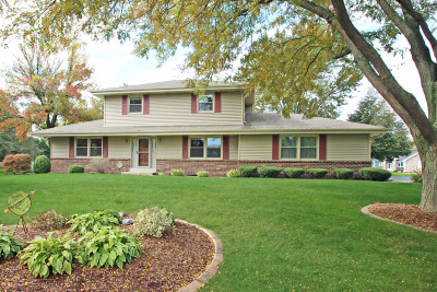 Germantown Single Family Home Active Contingent With Offer: N99w17129 Chick A Dee Ct