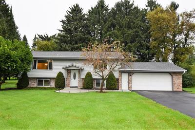 Delafield Single Family Home For Sale: 875 Sunset Dr