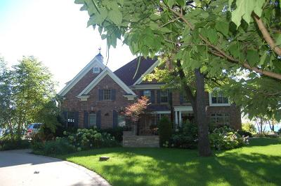 Kenosha County Single Family Home For Sale: 8757 Lakeshore Dr