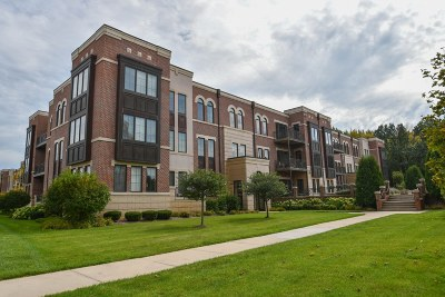 Brookfield Condo/Townhouse Active Contingent With Offer: 19115 Thomson Dr #302