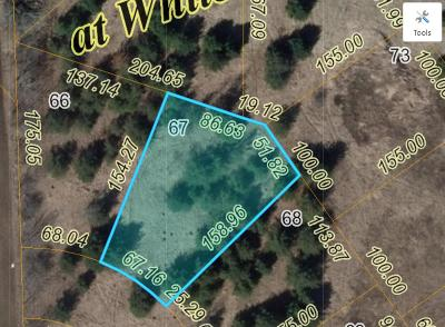 Residential Lots & Land Active Contingent With Offer: Lt67 Spruce St