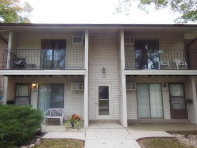 New Berlin Condo/Townhouse For Sale: 1604 S Carriage Ln #C