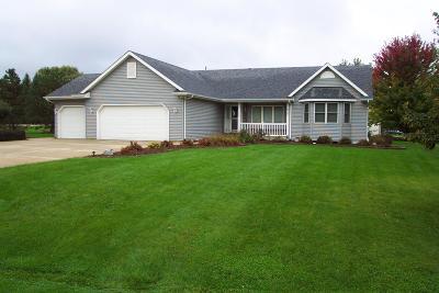Kenosha County Single Family Home For Sale: 11824 243rd Ave