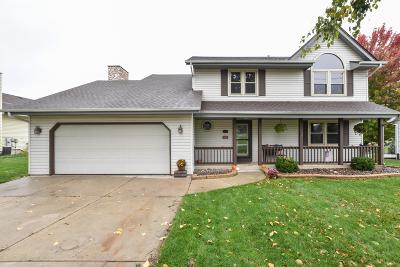 Racine County Single Family Home For Sale: 916 Weiler Rd
