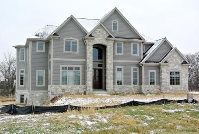 Waukesha County Single Family Home For Sale: W32n29525 Woodridge Ct