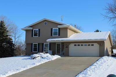 Racine County Single Family Home For Sale: 1233 Laurel Ln