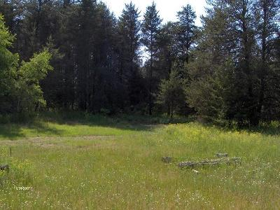 Menominee County, Marinette County Residential Lots & Land For Sale: 0.92 Acres Gene Dr & 2nd St