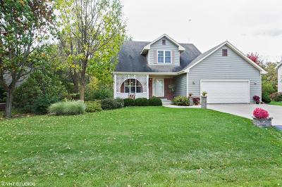 Kenosha County Single Family Home For Sale: 199 Lynne Dr