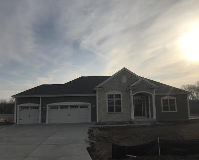 Waukesha County Single Family Home For Sale: 5652 S Foxtail Ct