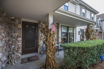 Pewaukee Condo/Townhouse Active Contingent With Offer: 330 Willow Grove Dr #D