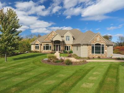 Waukesha County Single Family Home For Sale: N39w23610 Grey Fox Ct
