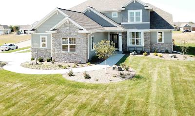 Summit WI Single Family Home For Sale: $619,900