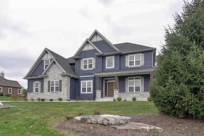 Kenosha County Single Family Home For Sale: 23713 115th St