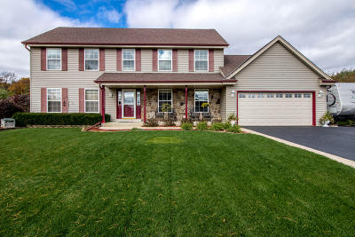 Racine County Single Family Home For Sale: 29500 River View Pkwy