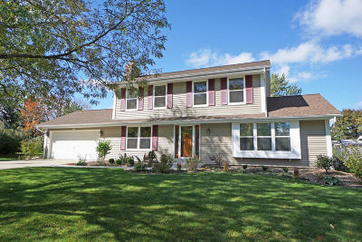 Waukesha County Single Family Home For Sale: 4235 S Tie Ave