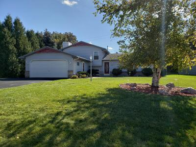 Racine County Single Family Home For Sale: 5855 Emstan Hills Rd