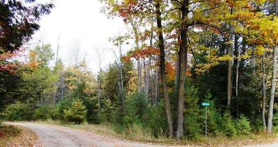 Residential Lots & Land For Sale: Lt25 Beaudin Ln