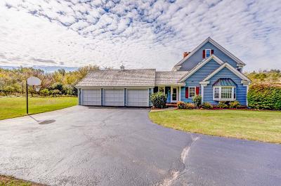 Waukesha County Single Family Home For Sale: N10w29887 St James Ct