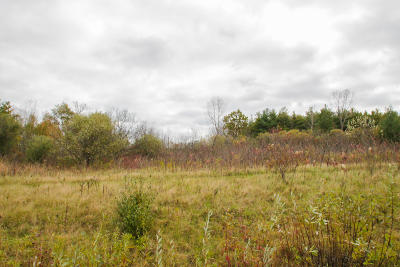 Cedarburg Residential Lots & Land For Sale: Lt1 Spring Hill Dr