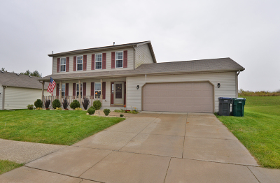 Racine County Single Family Home For Sale: 3670 95th Pl