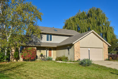 Single Family Home Active Contingent With Offer: 4132 S Regal Manor Ct