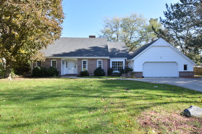 Brookfield Single Family Home Active Contingent With Offer: 3780 Dominic Dr