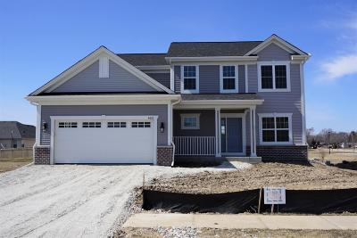 Racine Single Family Home For Sale: 4620 La Salle St #Lt25