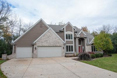 New Berlin Single Family Home For Sale: 4725 S Forest Ave
