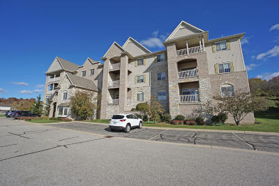 Oconomowoc Condo/Townhouse Active Contingent With Offer: 177 N Lapham St #301