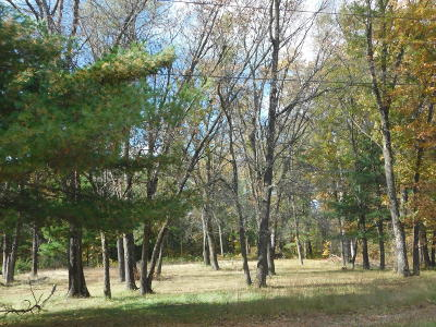 Menominee County, Marinette County Residential Lots & Land For Sale: W1621 Council Hill Trl