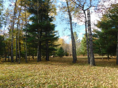 Menominee County, Marinette County Residential Lots & Land For Sale: W1645 Council Hill Trl