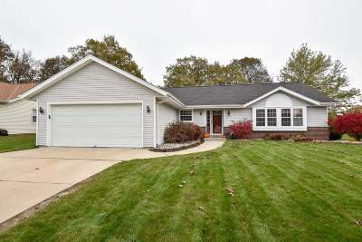 Oak Creek Single Family Home Active Contingent With Offer: 10370 S Ashley Ln